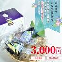 【送料無料|生きた乳酸菌入り】大阪・泉州特産水なす(ぬか漬×2・カット液漬×2・姿液漬×1)化粧箱入り水ナス糠漬け…