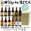 バラエティセット NiigataBEER 地ビール クラフト