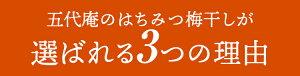 五代庵はちみつ梅紀州五代梅の心大粒10粒約230g【お歳暮ギフト】
