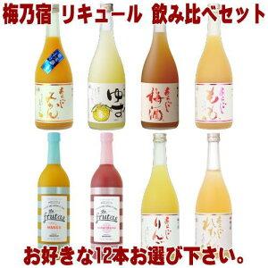 梅乃宿 リキュール 720ml 12本 選べる 飲み比べセットあらごし梅酒 ゆず酒 あらごしもも あらごしみかん あらごしりんご あらごしれもん マンゴー ブラッドオレンジから12本お選びください。