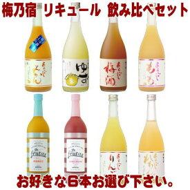 梅乃宿 リキュール 720ml 6本 選べる 飲み比べセットあらごし梅酒 ゆず酒 あらごしもも あらごしみかん あらごしりんご あらごしれもん マンゴー ブラッドオレンジから6本お選びください。送料無料 送料込み 梅酒 梅の宿 フルータス 奈良県 福袋 飲み比べ