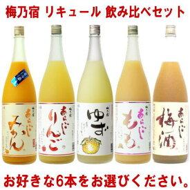 梅乃宿 リキュール 1800ml 6本 選べる 飲み比べセットあらごし梅酒 ゆず酒 あらごしもも あらごしみかん あらごしりんごから6本お選びください。送料無料 送料込み 梅酒 梅乃宿 梅の宿 奈良県 福袋飲み比べ