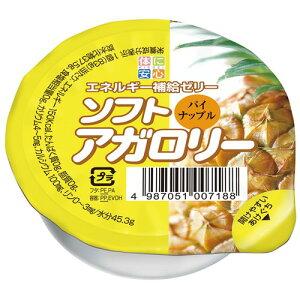 ソフトアガロリーパイナップル 1個