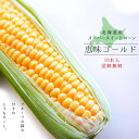『恵味ゴールド』10本 甘〜いとうもろこし【北海道 とうきび】朝もぎ!北海道産地直送!生でも美味しいフルーツトウモ…