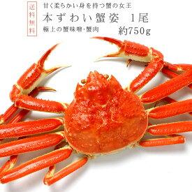 ズワイガニ750g前後【ずわい蟹姿】激安 訳ありではありません!ずわい蟹 大型のズワイがに【数量限定のカニ】かにの女王ズワイ蟹【別名松葉ガニ】上品な蟹の身とカニ味噌