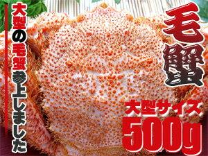 ボイル毛がに約500g【特大毛蟹】このケガニ安いですが訳ありではありません【冷凍毛ガニ】蟹味噌が最高のカニ三大蟹の1つのけがに