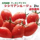 シシリアンルージュ(クッキングトマト)2kg 北海道産!何もしなくてもプロの味!からみつく、うまさ♪送料無料※只今、…