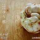 ゆり根3Lサイズ5kg【北海道十勝産ゆりね】幕別町・芽室【ほっかいどう冬の野菜 百合根】かきゆり ユリ根【天ぷら 卵と…