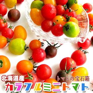 カラフルミニトマト1kg【北海道産トマトの宝石箱】甘いとまと 北海道の美味しくレアなトマトの詰合せ 【TOMATO JEWELRY BOX】ミニトマトのセットはギフトに最適!※只今、発送中!