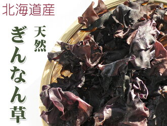银杏草30g天然北海道生产银杏那么样地罕见的绝品幸运耳朵海带