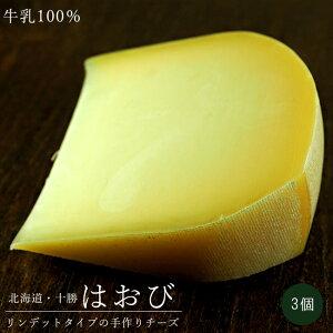はおび100g×3個【北海道清水町千年の森】ナチュラルチーズ キサラ・ファーム セミハード【キサラファーム】リンデットタイプ【クリーミーなちーず】濃厚Cheese きさら※次回6月18日出荷予定