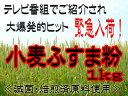 Img57116883