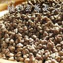 韃靼(だったん・ダッタン)そばの種(たね)栽培可【1kg】北海道産 韃靼蕎麦 だったんそば ダッタンソバ ポリフェ…