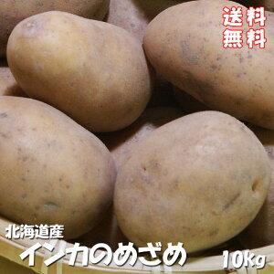 インカのめざめ!まとめ買い!10kg(サイズ無選別)【送料無料】北海道産地直送 いんかの目覚め 栗の様な甘いじゃがいも 美味しいジャガイモ※10月中旬頃より、収穫次第順次発送予定