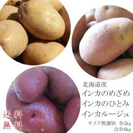 インカのひとみ&インカのめざめ&インカルージュセット!(サイズ無選別)各2kg、合計6kg【送料無料】北海道産地直送ジャガイモ【いんか】栗の様な甘いじゃがいも 美味しいジャガイモ ジャガ芋※10月下旬頃より、収穫次第順次発送