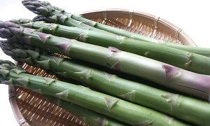 アスパラガス2種(グリーンアスパラ約600g、ホワイトアスパラ約400g)超極太【3L以上、1kg】送料無料!北海道産