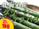 グリーンアスパラガス【2L、1kg】アスパラ送料無料!北海道産!※只今、発送中!