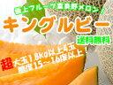 キングルビー【秀品】1.8kg以上×4玉 富良野メロン【赤肉ふらのめろん】お中元に希少な幻のふらのメロンを。送料無料!※7月上旬頃から順次発送予定