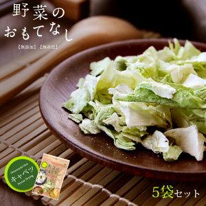 乾燥キャベツ6g×5袋セット【 野菜のおもてなし 】無添加 無着色 ニューフリーズドライ製法 味噌汁やスープなどの薬味、具材など使い方イロイロ。きゃべつ 甘藍 ふりーずどらい 乾燥野菜