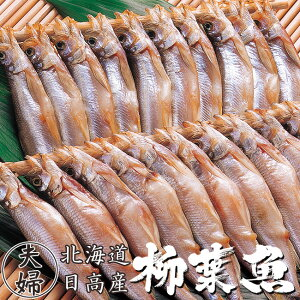 本ししゃも60尾 夫婦シシャモ【北海道産本柳葉魚】雄のシシャモ30尾 雌の子持ちシシャモ30尾 北海道の特産種の本シシャモ【簡単調理】海鮮ギフト 御中元や御歳暮等贈り物にも【本ししゃも