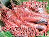 Natural spot prawns 500 g & natural deep-water shrimp fresh Botan shrimp to eat sashimi set in 500 g «Botan shrimp» and sweet shrimp [AMA EBI»