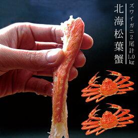 北海松葉ガニ【ズワイガニ】大2尾≪ボイル≫計1.0キロ 越前蟹や松葉ガニ、加能がにと呼ばれるずわいがに 大きいカニを2尾 解凍してすぐに食べれる松葉蟹です【送料無料】