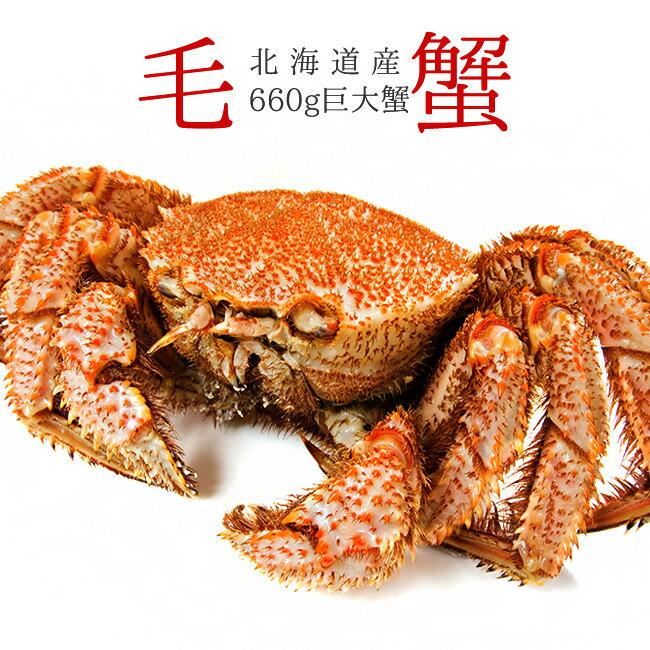 ボイル毛がに660g【北海道産巨大毛蟹】このケガニ安いですが訳ありではありません【冷凍毛ガニ】蟹味噌が最高のカニ 三大蟹の1つのけがに