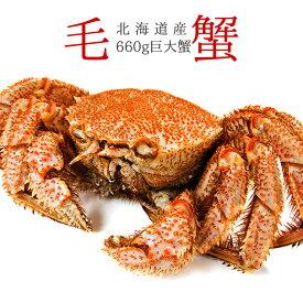 ボイル毛がに660g【北海道産巨大毛蟹】このケガニ安いですが訳ありではありません【冷凍毛ガニ】蟹味噌が最高のカニ 三大蟹の1つのけがに【送料無料】