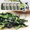 乾燥大根菜20g×5個セット【国内産原料使用】だいこん菜を熱湯で戻すだけの簡単調理!エアーズドライ(熱風乾燥)ダイコ…