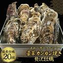 【クーポンで7,980円→3,990円】 豪華カンカン焼き 贅沢牡蠣 20個入り カンカン焼き カキ 殻付き牡蠣 殻付き 牡蠣 送…