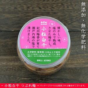 ●無添加 紀州梅香の小梅 昔ながらの塩のみ梅 白干 (小粒南高) 500g 訳あり つぶれ梅 <小粒 白梅干>