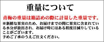 [5月下旬から6月にかけて発送]梅干し用南高梅秀品5kg大粒3L〜4Lサイズ【紀州グルメ】【送料無料】【紀州和歌山県産】【秀品】
