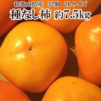 種なし柿7.5kg32個2Lサイズ