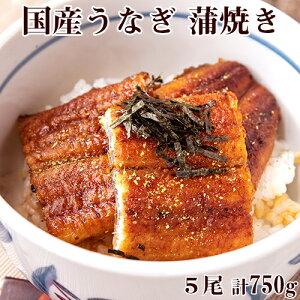 うなぎ 蒲焼き 5尾 合計約750g タレ 山椒粉 刻み海苔 お吸い物付き 国産 送料無料 日本グルメ ギフト 贈り物 プレゼント 鰻