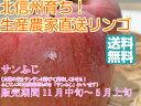 【送料無料】太陽の味覚!無袋栽培の「サンふじ」上級ランク ご贈答向き 約10kg箱