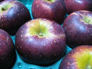 2020年度 信州産 秋映(あきばえ)訳あり自家用ランク約2.7〜3kg(6〜12玉)【送料無料(一部地域は有料)】信州中野市で誕生した甘さと酸味のバランスがGoodなりんご!