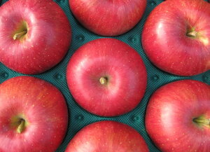 生産農家直送 訳ありりんご「信州産シナノスイート 」自家用ランク約3kg(6〜12玉)収穫&発送は10月5日過ぎ頃から順次発送【送料無料(一部地域は有料)】