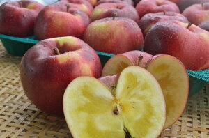 信州産 幻のリンゴ「こうみつ」上級ランク 約3kg(5〜11玉)パイナップルのような食感と甘味が特徴的な希少な黒い外観の蜜りんご! 収穫&発送は11月20日過ぎ頃から順次開始予定!(気象