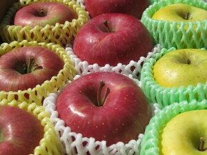 生産農家直送 園主お勧め2〜3品種詰め合わせ「信州産 旬の訳ありりんご 」自家用ランク約2.7〜3kg(6〜12玉)【送料無料(一部地域は有料)】母の日 フルーツ ギフト プレゼント