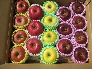 生産農家直送 園主お勧め2〜3品種詰め合わせ「信州産 旬のりんご 」中級ランク約4.7〜5kg(10〜20玉)【送料無料(一部地域は有料)】掲載画像は一例(イメージ)です。収穫時期・貯蔵期間
