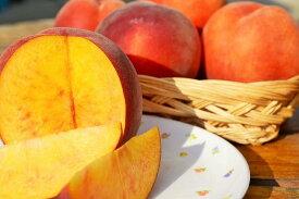 信州名産!桃とネクタリンのかけ合わせフルーツ「ワッサー」 訳あり自家用ランク 約2.7〜3kg(6玉〜14玉)【送料無料(一部地域は有料)】甘柿のような新食感の桃Newタイプ