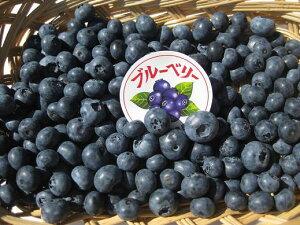 長野県産 無農薬栽培で生食や加工品にも最適な「生ブルーベリー 約1kg箱」【送料無料(一部地域は有料)】