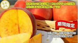 信州名産!桃とネクタリンのかけ合わせフルーツ「ワッサー」 訳あり自家用ランク 約1.8〜2kg(5玉〜10玉)【送料無料(一部地域は有料)】食べきりやすい少量タイプです。