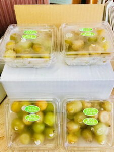 【送料無料】長野県産 冷凍シャインマスカット 約800g【訳あり・カット・冷凍品】
