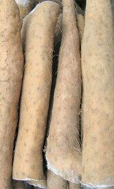 信州特産 長芋!の 使い切り易い カット品 家庭用 約3.5〜4kg箱(3〜10本位入)【送料無料(一部地域は有料)】
