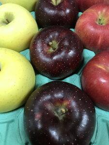 生産農家直送 園主お勧め2〜3品種詰め合わせ「信州産 旬のりんご 」中級ランク約2.7〜3kg(6〜12玉)【送料無料(一部地域は有料)】掲載画像は一例(イメージ)です。収穫時期・貯蔵期間