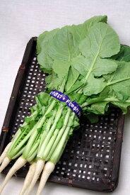石川県産 だいこん菜 150〜200g 1把
