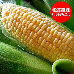 北海道産 とうもろこし 冷凍品 トウモロコシ 北海道の黄色いとうもろこし(冷凍) L〜2Lサイズを10本 価格 2280円