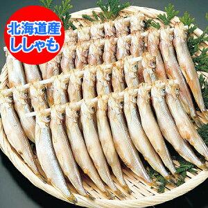 ししゃも 北海道 ししゃも 子持ち 北海道産 シシャモ メス 30尾 化粧箱入 価格 4550円