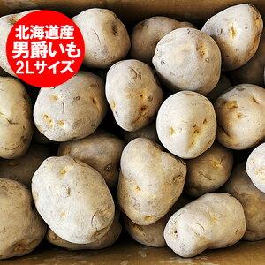 じゃがいも 送料無料 男爵いも 北海道産 じゃがいも 男爵いも 10kg 2Lサイズ 価格4320円 北海道 ジャガイモ だんしゃくいも